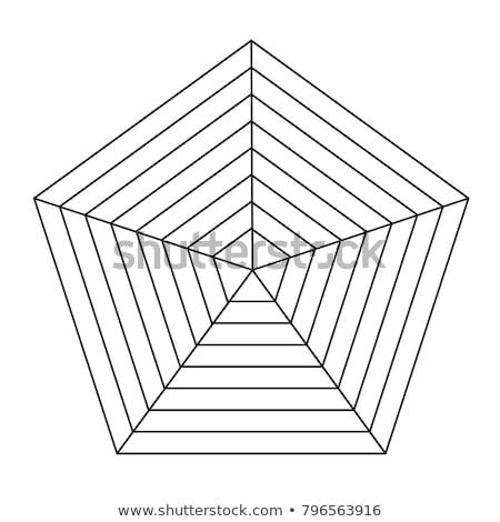 Pókháló radar csillag diagram grafikon fehér Stock fotó © PixelsAway
