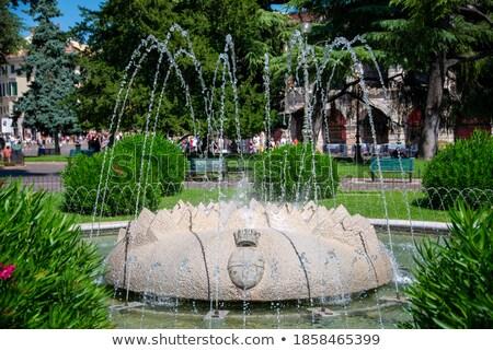 муниципальный квадратный фонтан великолепный небе город Сток-фото © luissantos84