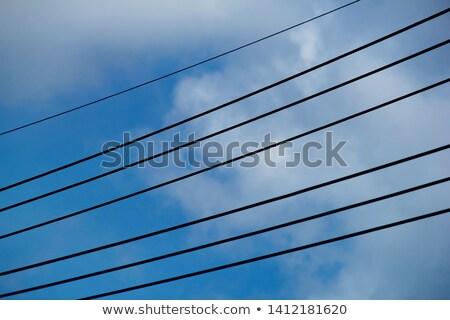 Kilátás nagyfeszültség fém hálózat ipar kábel Stock fotó © chrisbradshaw