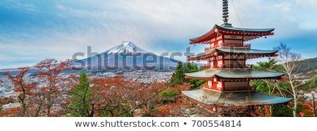 Fuji panorama Giappone montagna lago cielo Foto d'archivio © vichie81