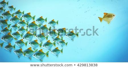 folyam · 3D · generált · kép · vezető · ötlet - stock fotó © flipfine