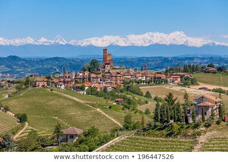 vidéki · ház · dombok · Olaszország · zöld · hegyek - stock fotó © rglinsky77