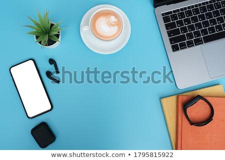 青 · 鉛筆 · 図書 · カップ · コーヒー · 白 - ストックフォト © karandaev