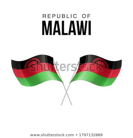 Republika Malawi mały mężczyzna 3d banderą Zdjęcia stock © Istanbul2009