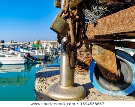 Mediterráneo oxidado puerta mar flores amarillas Foto stock © lunamarina