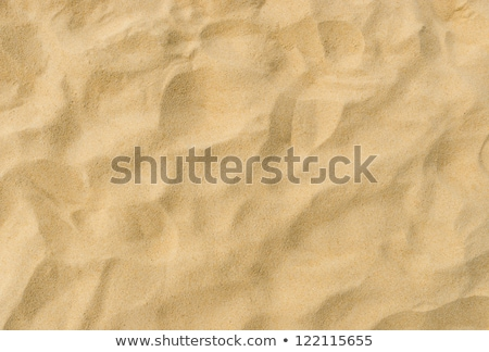 Desert Sand Texture Stock photo © rghenry