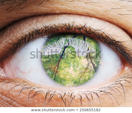 Closeup of human eye, macro mode with double exposure Stock photo © zurijeta