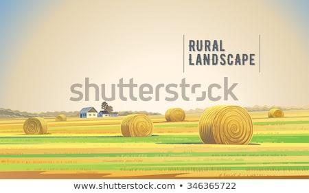 Stockfoto: Najaar · landschap · berg · dorp · hooiberg