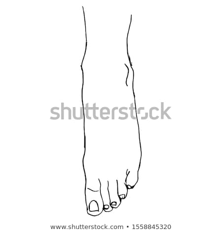 Female bare feet Stock photo © Nobilior