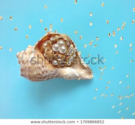 Altın kahverengi takı denizyıldızı deniz Stok fotoğraf © blackmoon979