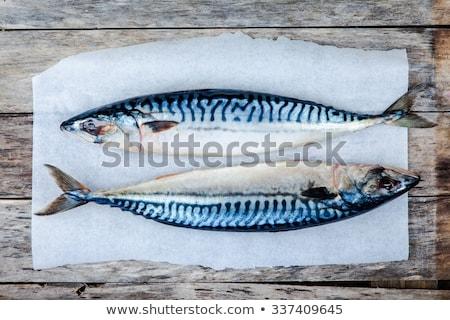 Friss makréla papír egyéb hozzávalók étel Stock fotó © Digifoodstock