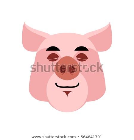 sonolento · porco · cara · grupo · piso · engraçado - foto stock © popaukropa