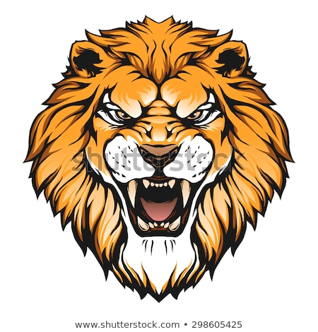 roaring lion head illustration stock photo © krisdog