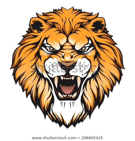 aslan · karikatür · kedi · dizayn · sanat · ağız - stok fotoğraf © krisdog