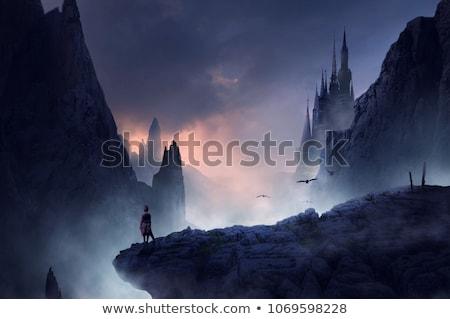 fantasy · krajobraz · funny · cartoon · niebo · lasu - zdjęcia stock © ddraw