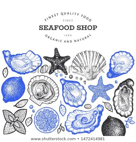 Vector sea shells and starfish labels Stock photo © blumer1979