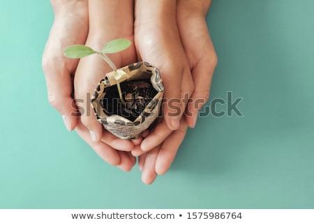 Eco vida mão humana silhuetas Foto stock © psychoshadow