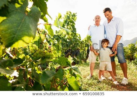 aile · ayakta · açık · havada · el · ele · tutuşarak · gülen · çocuklar - stok fotoğraf © is2
