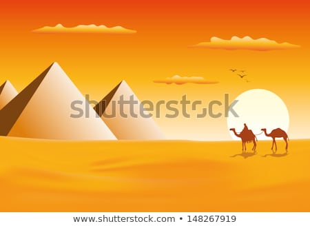 Pyramids in afternoon Stock photo © Givaga