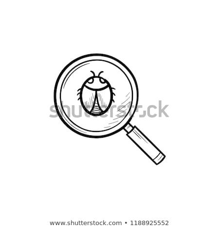 magnifying glass over bug hand drawn outline doodle icon stock photo © rastudio