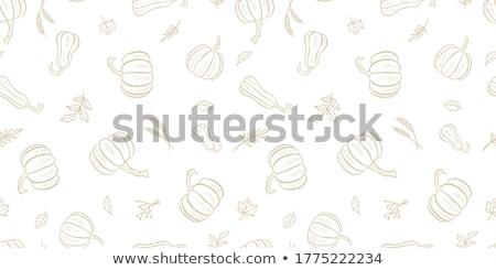 тыква · зеленые · листья · изолированный · белый · здорового · органический - Сток-фото © artspace