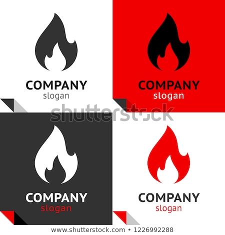 огня пламя новых набор четыре логотип Сток-фото © Ecelop