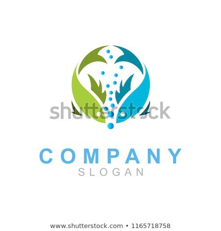 Vis zwemmen cirkel logo teken element Stockfoto © blaskorizov