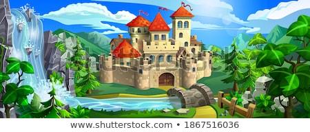 old fairytale castle standing on hill landscape stock photo © jossdiim