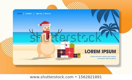 Seascape Merry Christmas postcard template Vector Stock photo © robuart