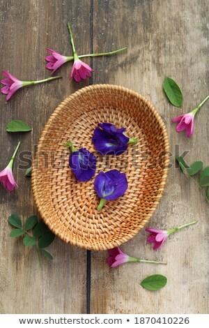 Bois violette fleurs osier panier table Photo stock © madeleine_steinbach