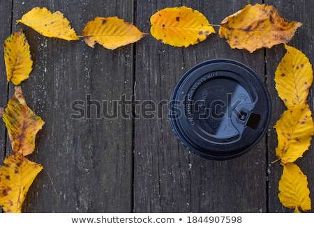 Photo stock: Wooden Frame On The Leafage Ornamental Background