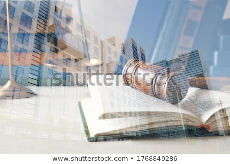 A law book with a gavel  - Financial Law Stock photo © Zerbor