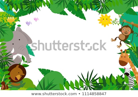 A wild animal frame Stock photo © bluering