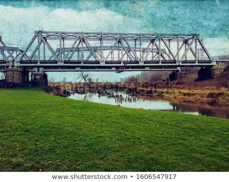 Spoorweg brug ijs licht rivier rijden Stockfoto © fanfo
