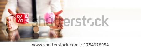 バランス パーセンテージ シーソー ビジネス ストックフォト © AndreyPopov