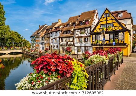 ciudad · paisaje · urbano · imagen · centro · de · la · ciudad · flores · calle - foto stock © borisb17