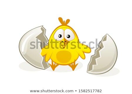 Iyi paskalyalar kart komik bebek tavuk yumurta Stok fotoğraf © cienpies