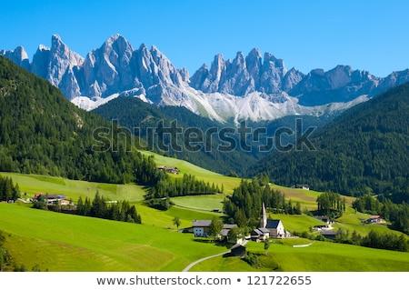 Dorp Zwitserland alpen alpine berg landschap Stockfoto © travelphotography