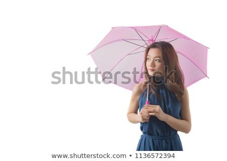 asiático · guarda-chuva · pormenor · feito · à · mão · decorado - foto stock © smithore