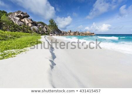 Pristine beach Stock photo © leeser
