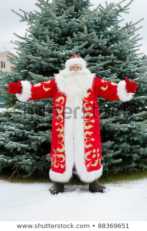 Portrait of Santa Claus standing with open hands outdoors at chr Stock photo © HASLOO