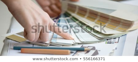 Female decorator with a selection of color swatches Stock photo © photography33