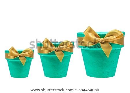 Three empty flowerpots isolated on white  Stock photo © Julietphotography