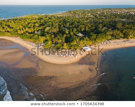 Beachfront in Bahia		 Stock photo © Spectral