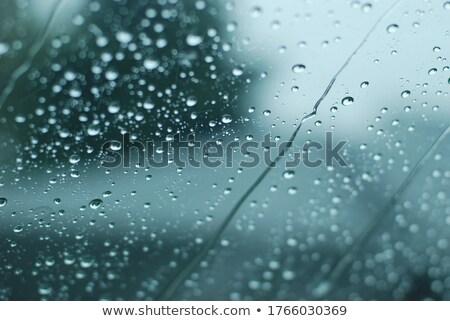 Esőcseppek zuhan üveg textúra absztrakt természet Stock fotó © danielgilbey