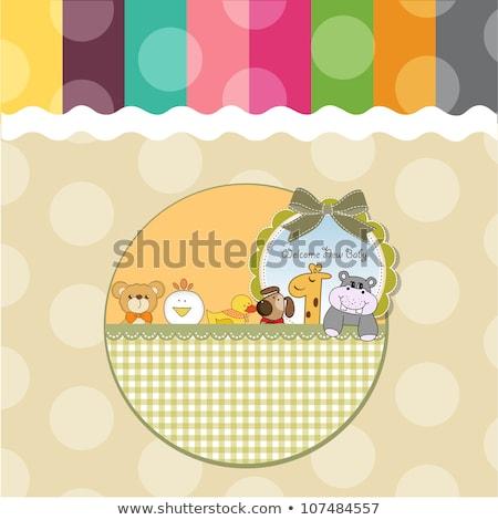 özelleştirilebilir tebrik kartı ördek parti mutlu soyut Stok fotoğraf © balasoiu