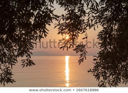 greek of nature stock photo © hypnocreative