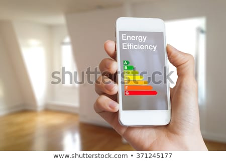 Woman with energy efficiency chart Stock photo © photography33