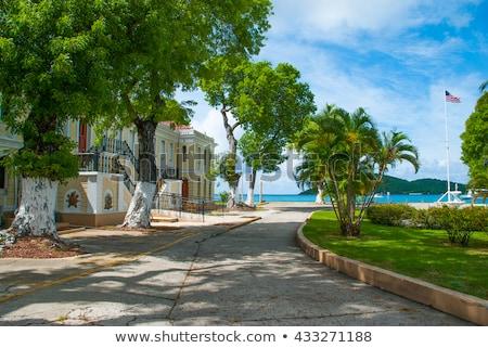 Wyspy Dziewicze wejście domu miasta schody Zdjęcia stock © backyardproductions