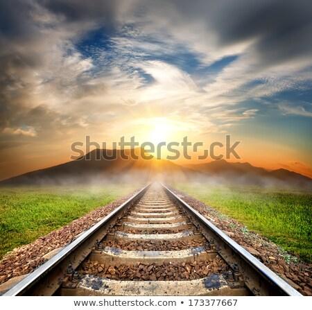 Railroad tracks in the mountains Stock photo © elxeneize